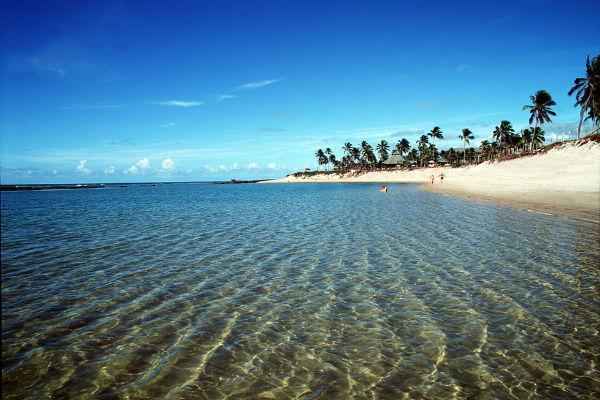 Praias pernambucanas que foram atingidas pelo óleo estão próprias ...